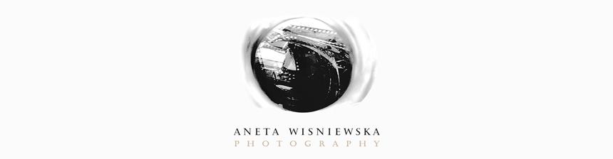 Chicago Wedding Photographer | Aneta Wisniewska Photography | Chicago & Destination Wedding Photography logo