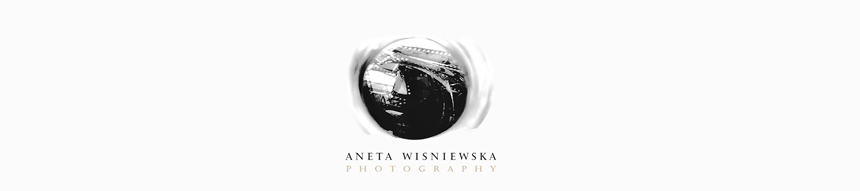 Chicago Wedding Photographer | Aneta Wisniewska Photography | Chicago & Destination Wedding Photography logo
